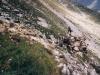 arosa-alpli-tschirpen-15-07-2003-03-scan