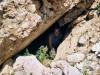 arosa-alpli-tschirpen-15-07-2003-07-scan